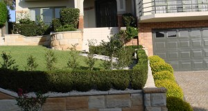 29-retaining-wall-planting